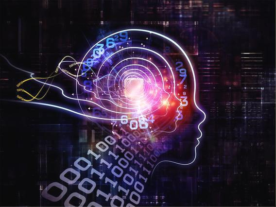 Resultado de imagen de En el cerebro hay un lugar para guardad recuerdos