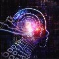 Desarrollan chip cerebral que almacena recuerdos