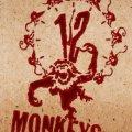 12 Monkeys, la serie (Enero de 2015)