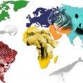 Se acerca la sexta extinción masiva de la Tierra