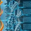 Fabrican las primeras enzimas sintéticas