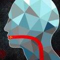 Desarrollan nuevas píldoras con nanopartículas