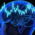 Descubren la molécula del olvido