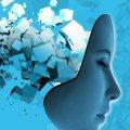 Logran transferir recuerdos entre seres vivos