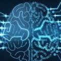IBM y DARPA construirán un cerebro artificial